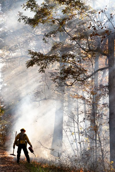 A wildland firefighter standing among smoke and flames as he conducts a prescribed burn.